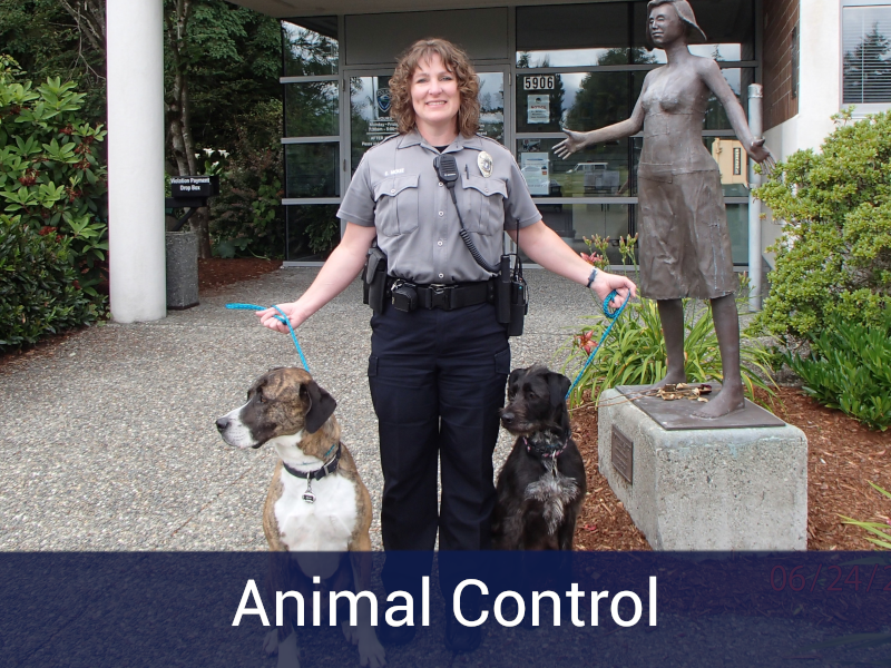 Animal Control Button