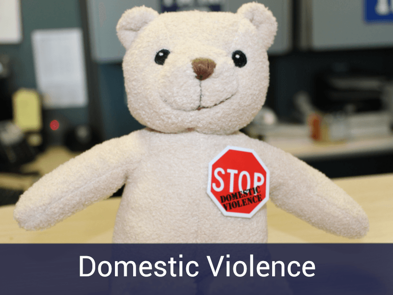 Domestic Violence Button