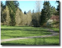 Urban Forestry Park