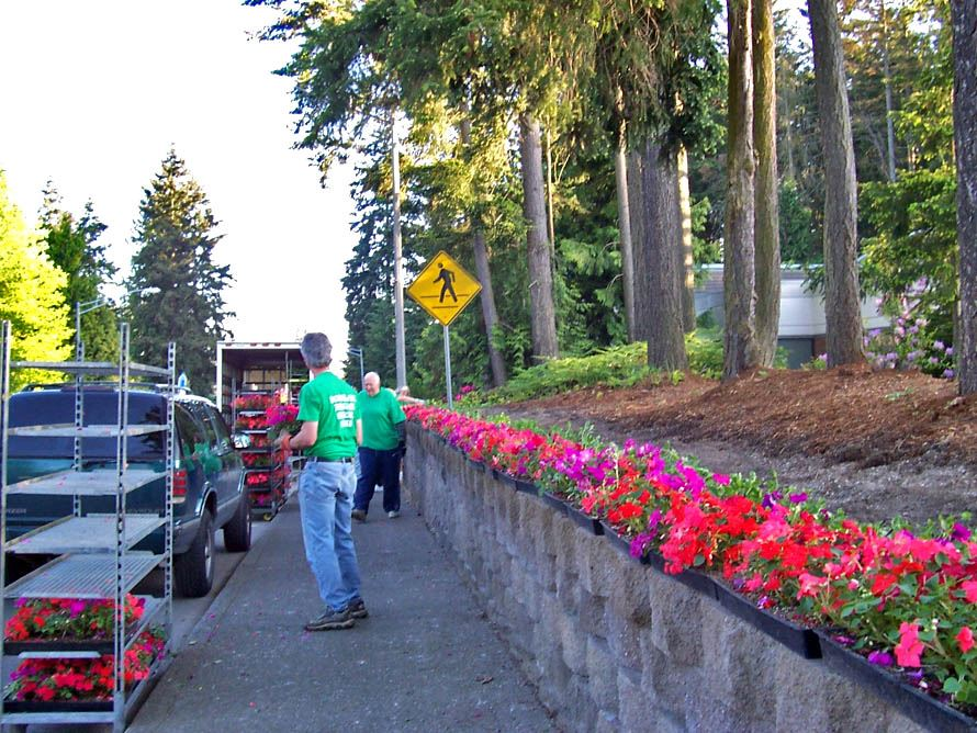 Garden Club preparing to plant flowers at the Library site.