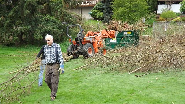 Volunteers cleaning up tree waste.