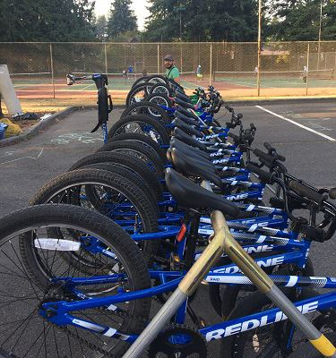 Blue Bikes lined up at NNO