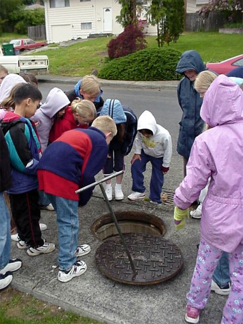 A group of children learning about the storm water system looking in a manhole.