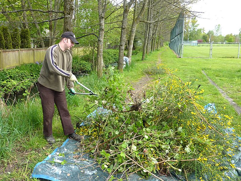 Man cutting up plant debris.