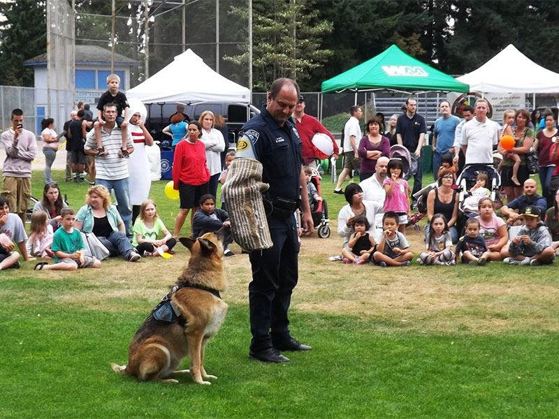 Showing dogs at National Night Out 2012.